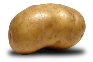 Voici une grosse patate chaude.